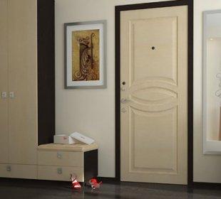 двери в интерьере 7
