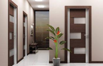 Почему стоит выбрать межкомнатные двери из экошпона?
