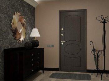 Особенности ухода за металлической входной дверью